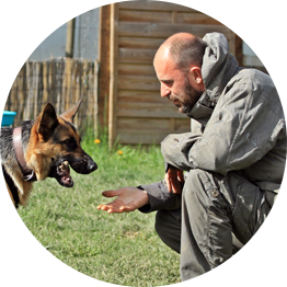 Formation continue éducateur canin,Centre formation éducateur canin, Education Canine Grenoble, Centre Canin Grenoble, formation continue éducateur canin 38